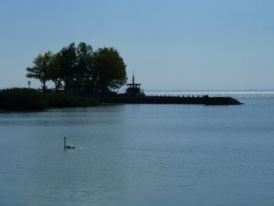 Balatoni järv